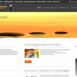 Optimental Consulting Ancienne Version